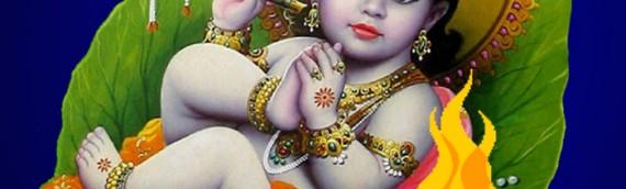 Santan Gopal Mantra Jaap with Homa(Yagna)